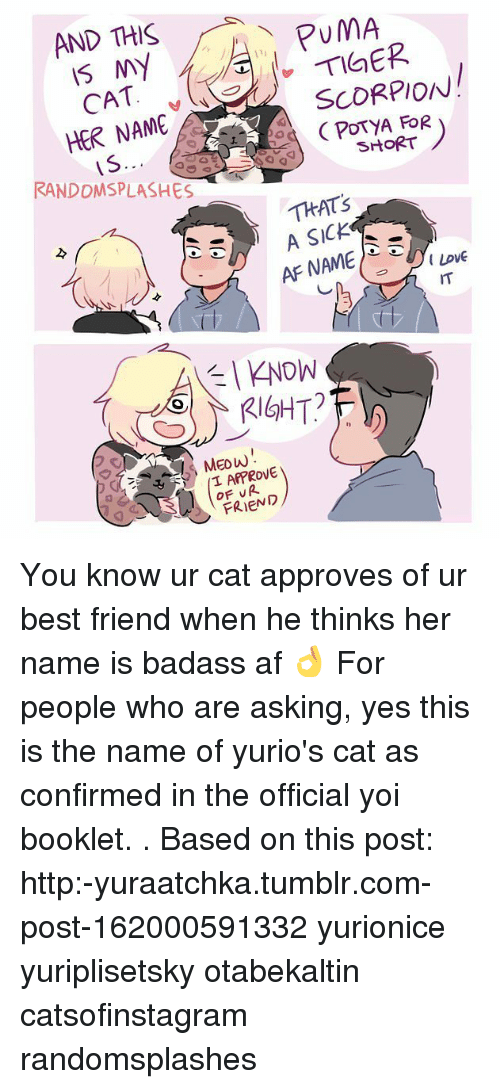 pumas: AND THIS  PUMA  NY  SCORPION  CAT  HER NAME  A FOR  SHORT  IS.  RANDDMSPLASHES  THAT's  A SICK  AFNAME  KNOW  RIGHT?  T APPROVE  FRIEND You know ur cat approves of ur best friend when he thinks her name is badass af 👌 For people who are asking, yes this is the name of yurio's cat as confirmed in the official yoi booklet. . Based on this post: http:-yuraatchka.tumblr.com-post-162000591332 yurionice yuriplisetsky otabekaltin catsofinstagram randomsplashes