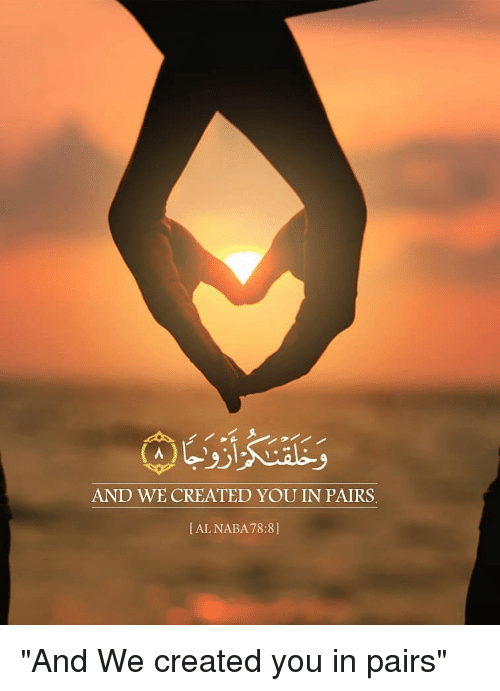 "Pairs: AND WE CREATED YOU IN PAIRS  [AL NABA78:8] ""And We created you in pairs"""