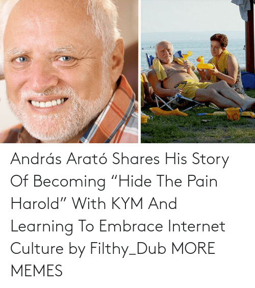 "hide: András Arató Shares His Story Of Becoming ""Hide The Pain Harold"" With KYM And Learning To Embrace Internet Culture by Filthy_Dub MORE MEMES"