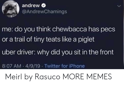 Chewbacca, Dank, and Iphone: andrew  @AndrewChamings  me: do you think chewbacca has pecs  or a trail of tiny teats like a piglet  uber driver: why did you sit in the front  8:07 AM 4/9/19 Twitter for iPhone Meirl by Rasuco MORE MEMES