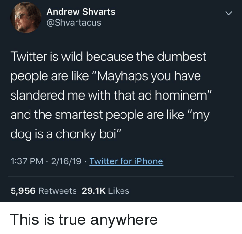 """Iphone, True, and Twitter: Andrew Shvarts  @Shvartacus  Twitter is wild because the dumbest  people are like """"Mayhaps you have  slandered me with that ad hominem""""  and the smartest people are like """"my  dog is a chonky boi""""  1:37 PM . 2/16/19 . Twitter for iPhone  5,956 Retweets 29.1K Likes This is true anywhere"""