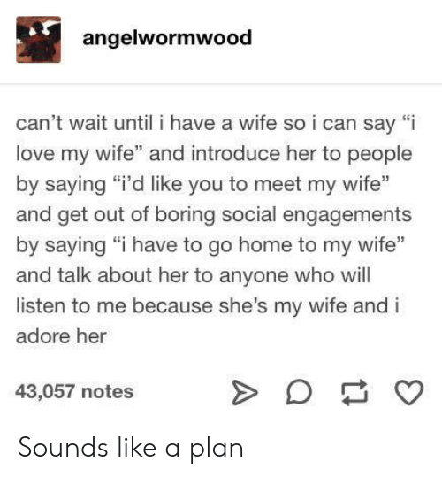 """Love, Home, and Wife: angelwormwood  can't wait until i have a wife soi can say """"i  love my wife"""" and introduce her to people  by saying """"i'd like you to meet my wife""""  and get out of boring social engagements  by saying """"i have to go home to my wife""""  and talk about her to anyone who will  listen to me because she's my wife and i  adore her  43,057 notes  A Sounds like a plan"""