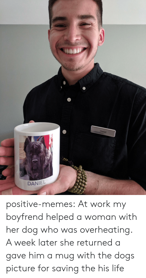 Dogs, Life, and Memes: aniel  tte  DANIEL positive-memes:  At work my boyfrend helped a woman with her dog who was overheating. A week later she returned a gave him a mug with the dogs picture for saving the his life