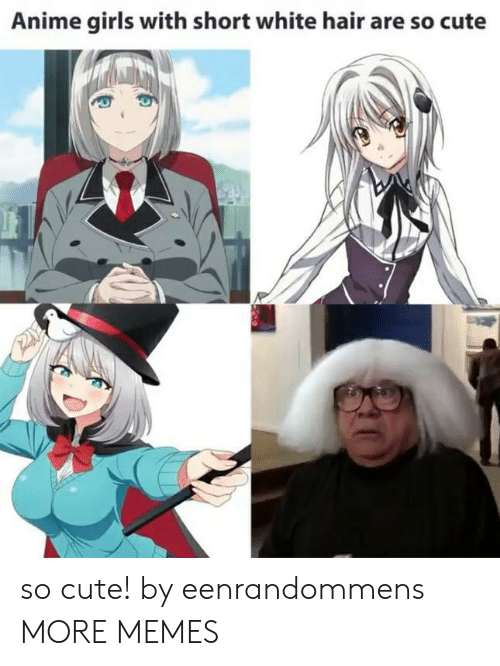 Anime, Cute, and Dank: Anime girls with short white hair are so cute so cute! by eenrandommens MORE MEMES