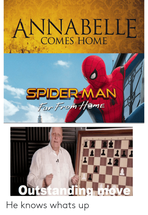 Spider, SpiderMan, and Home: ANNABELLE I  COMES HOME  SPIDER-MAN  Far From HamE  Outstanding move He knows whats up