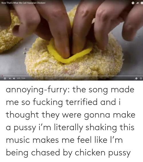 song: annoying-furry: the song made me so fucking terrified and i thought they were gonna make a pussy i'm literally shaking this music makes me feel like I'm being chased by chicken pussy