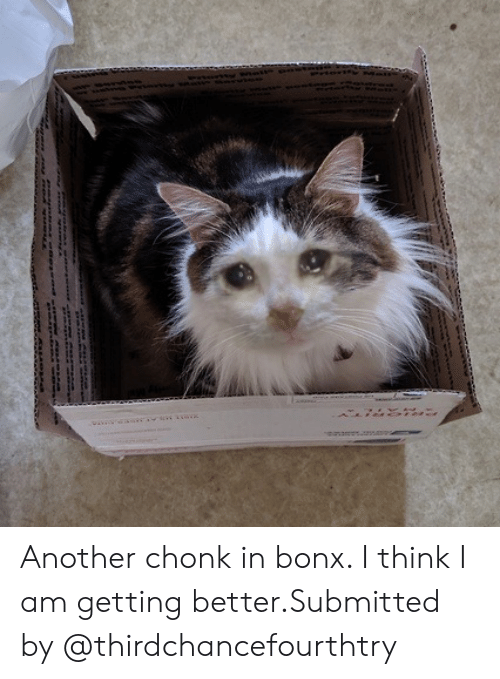 Another, Class, and Think: Another chonk in bonx. I think I am getting better.Submitted by @thirdchancefourthtry