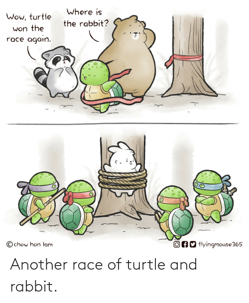 Race: Another race of turtle and rabbit.