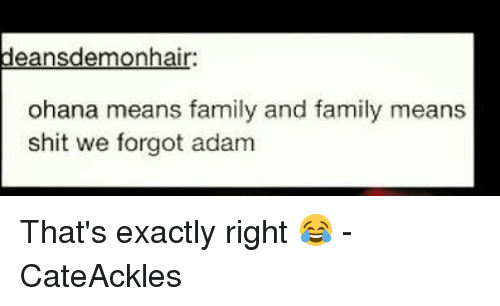 ohana means family: ansdemonhai  ohana means family and family means  shit we forgot adam That's exactly right 😂 - CateAckles