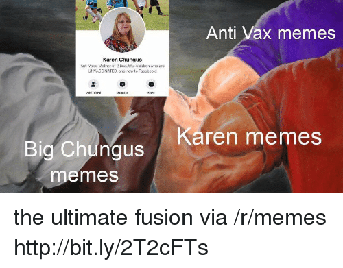 Chungus: Anti Vax memes  Karen Chungus  Anti Vaxx, Mother of 2 beautiful children who are  UNVACCINATED, and new to Faccbook!  Add Friend  Karen memes  Big Chungus  emes the ultimate fusion via /r/memes http://bit.ly/2T2cFTs