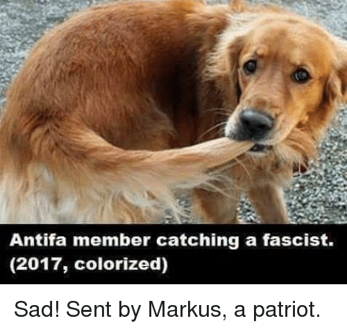 Senting: Antifa member catching a fascist.  (2017, colorized) Sad!  Sent by Markus, a patriot.