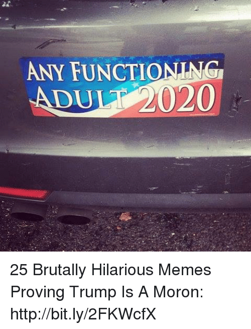 Memes, Http, and Trump: ANY FUNCTIONING  ADUL 2020 25 Brutally Hilarious Memes Proving Trump Is A Moron: http://bit.ly/2FKWcfX