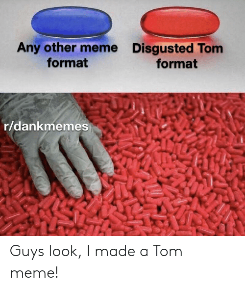 Any Other Meme Format Disgusted Tom Format Rdankmemes Guys Look I