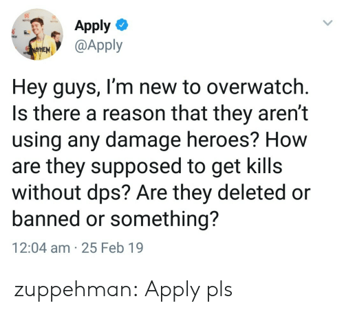Tumblr, Blog, and Heroes: Apply  @Apply  Hey guys, I'm new to overwatch  Is there a reason that they aren't  using any damage heroes? How  are they supposed to get kills  without dps? Are they deleted or  banned or something?  12:04 am 25 Feb 19 zuppehman:  Apply pls