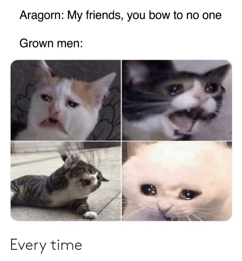 Friends, Lord of the Rings, and Time: Aragorn: My friends, you bow to no one  Grown men: Every time