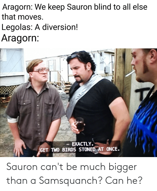 Diversion: Aragorn: We keep Sauron blind to all else  that moves.  Legolas: A diversion!  Aragorn:  EXACTLY.  GET TWO BIRDS STONĘD AT ONCE. Sauron can't be much bigger than a Samsquanch? Can he?