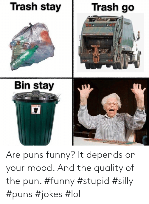 puns: Are puns funny? It depends on your mood. And the quality of the pun. #funny #stupid #silly #puns #jokes #lol
