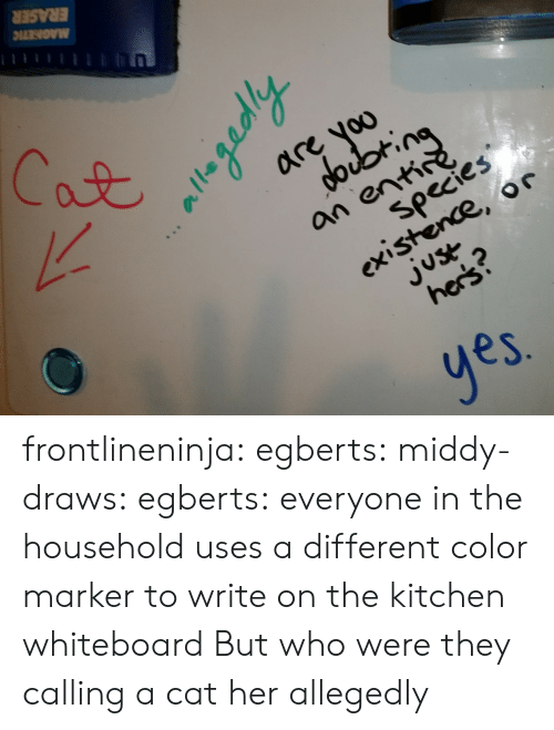 Tumblr, Blog, and Http: are voo  an ent  species  existence, or  2  es frontlineninja:  egberts:  middy-draws:  egberts:  everyone in the household uses a different color marker to write on the kitchen whiteboard  But who were they calling a cat  her  allegedly