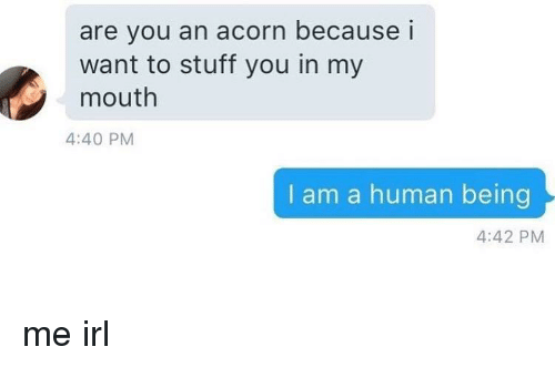 acorn: are you an acorn because i  want to stuff you in my  mouth  4:40 PM  I am a human being  4:42 PM me irl