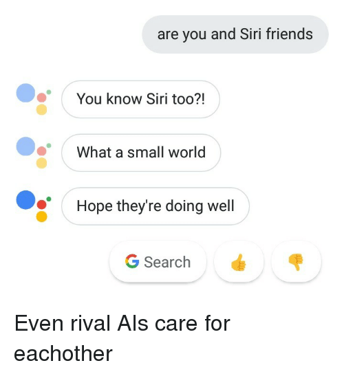 Friends, Siri, and Search: are you and Siri friends  You know Siri too?!  What a small world  Hope they're doing well  G Search Even rival AIs care for eachother