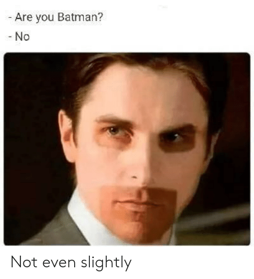 Batman, You, and Are You: Are you Batman?  -No Not even slightly