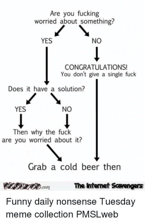meme collection: Are you fucking  worried about something?  YES  NO  CONGRATULATIONS!  You don't give a single fuck  Does it have a solution?  YES  NO  Then why the fuck  are you worried about it?  Grab a cold beer thern  PinsiyecomThe intemet Scavengers <p>Funny daily nonsense  Tuesday meme collection  PMSLweb </p>