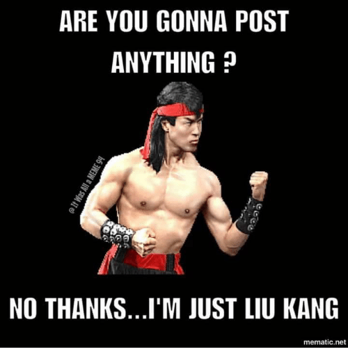 Net, Liu Kang, and You: ARE YOU GONNA POST  ANYTHING?  NO THANKS...I'M JUST LIU KANG  mematic.net