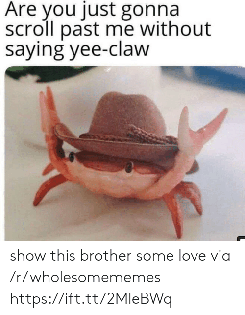 Claw: Are you just gonna  scroll past me without  saying yee-claw show this brother some love via /r/wholesomememes https://ift.tt/2MleBWq