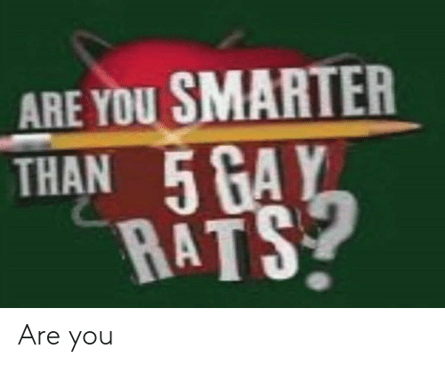 Smarter Than: ARE YOU SMARTER  THAN 5 GAY  RATS Are you