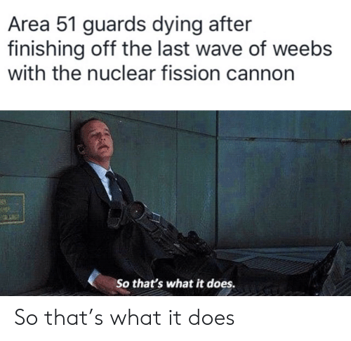 Weebs: Area 51 guards dying after  finishing off the last wave of weebs  with the nuclear fission cannon  25  So that's what it does. So that's what it does