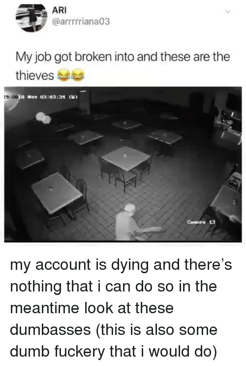 In The Meantime: ARI  @arrrrriana03  My job got broken into and these are the  thieves  9-20  B Mon 03:03:34 (H)  Canora 13 my account is dying and there's nothing that i can do so in the meantime look at these dumbasses (this is also some dumb fuckery that i would do)