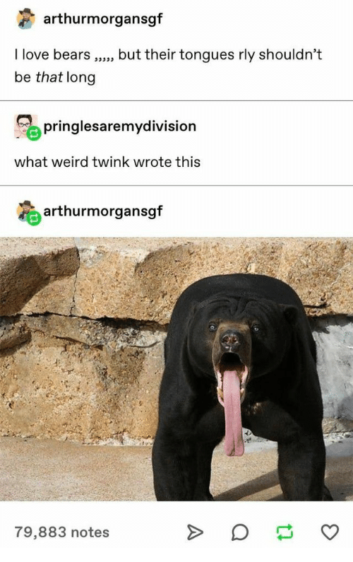 Love, Weird, and Bears: arthurmorgansgf  I love bears  but their tongues rly shouldn't  be that long  pringlesaremydivision  what weird twink wrote this  arthurmorgansgf  79,883 notes