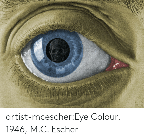 eye: artist-mcescher:Eye Colour, 1946, M.C. Escher