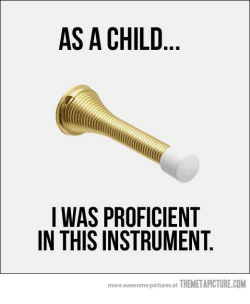 Proficious: AS A CHILD  I WAS PROFICIENT  IN THIS INSTRUMENT  more awesome pictures at THEMETAPICTURE.COM