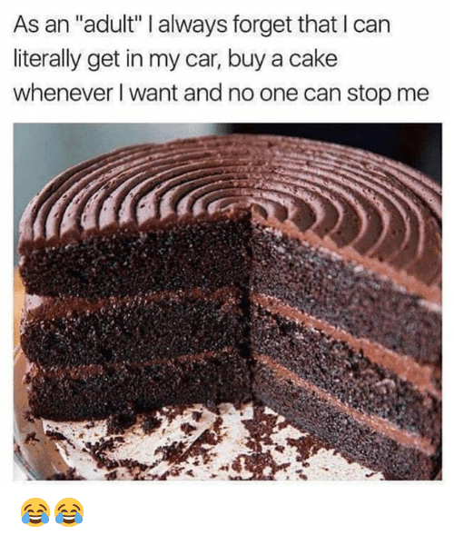 "Memes, Cake, and 🤖: As an ""adult"" I always forget that I can  literally get in my car, buy a cake  whenever I want and no one can stop me 😂😂"