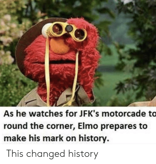 Elmo: As he watches for JFK's motorcade to  round the corner, Elmo prepares to  make his mark on history. This changed history