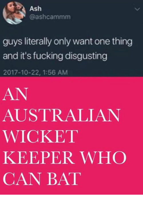 wicket: Ash  @ashcammm  guys literally only want one thing  and it's fucking disgusting  2017-10-22, 1:56 AM  AN  AUSTRALIAN  WICKET  KEEPER WHC  CAN BAT