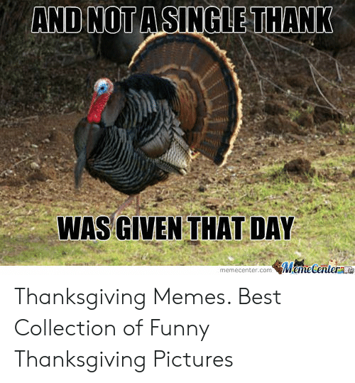 Funny, Memes, and Thanksgiving: ASINGLETHANK  AND WOT  WAS GIVEN THAT DAY  memecenter.com MameCenter Thanksgiving Memes. Best Collection of Funny Thanksgiving Pictures