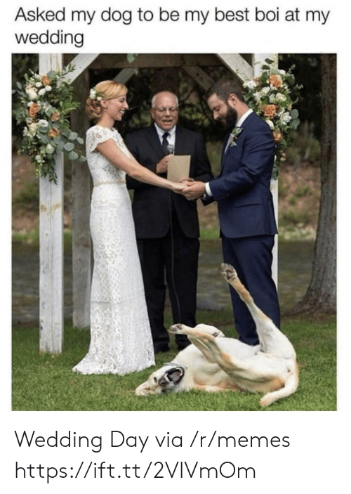 Wedding Day: Asked my dog to be my best boi at my  wedding Wedding Day via /r/memes https://ift.tt/2VlVmOm