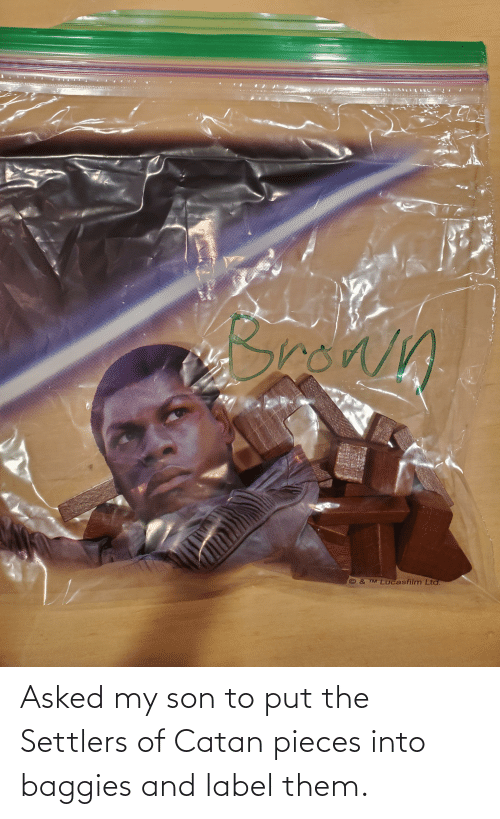 label: Asked my son to put the Settlers of Catan pieces into baggies and label them.