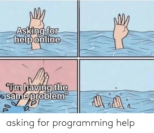 "Asking For: Asking for  help online  ""Um having the  same probl  em""  D0. asking for programming help"
