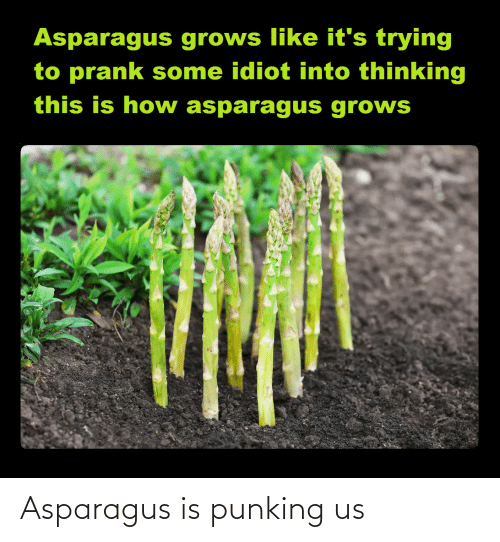 Us: Asparagus is punking us