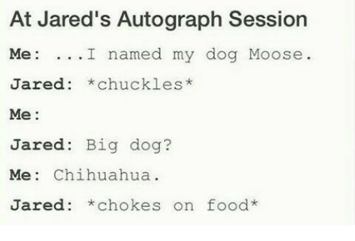 Chihuahua, Memes, and Jared: At Jared's Autograph Session  Me  I named my dog Moose  Jared chuckles  Me  Jared  Big dog?  Me: Chihuahua  Jared *chokes on food