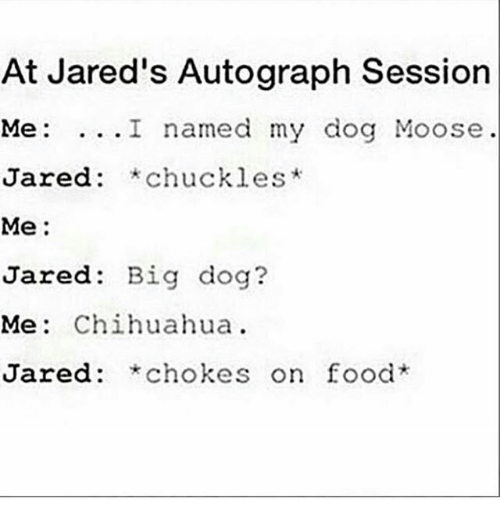 big dog: At Jared's Autograph Session  Me: ...I named my dog Moose  Jared: *chuckles*  red: *chuckles  Me:  Jared: Big dog?  Me: Chihuahua.  Jared: *chokes on food