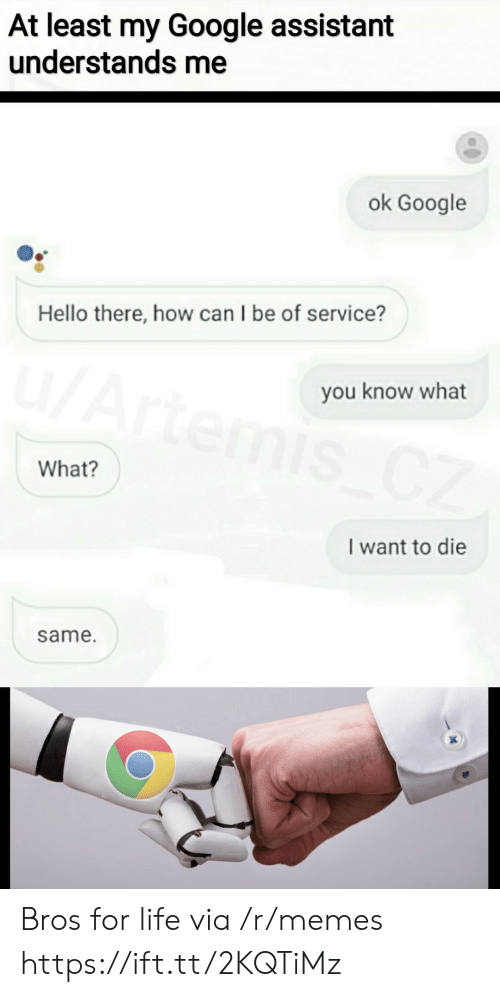 artemis: At least my Google assistant  understands me  ok Google  Hello there, how can I be of service?  u/Artemis CZ  you know what  What?  I want to die  same. Bros for life via /r/memes https://ift.tt/2KQTiMz