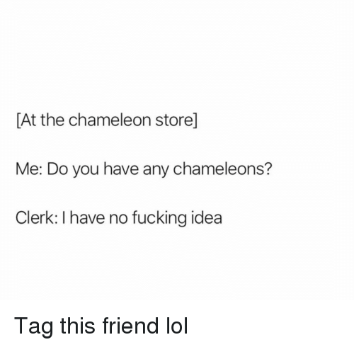 Fucking, Funny, and Lol: [At the chameleon store]  Me: Do you have any chameleons?  Clerk: I have no fucking idea Tag this friend lol