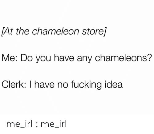 Fucking, Chameleon, and Irl: [At the chameleon store]  Me: Do you have any chameleons?  Clerk: I have no fucking idea me_irl : me_irl