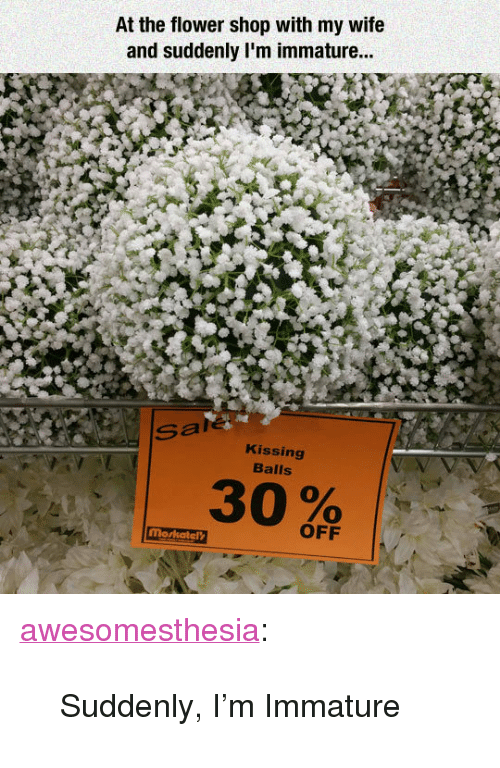 "immature: At the flower shop with my wife  and suddenly I'm immature...  Sale  Kissing  Balls  OFF <p><a href=""http://awesomesthesia.tumblr.com/post/171171227117/suddenly-im-immature"" class=""tumblr_blog"">awesomesthesia</a>:</p>  <blockquote><p>Suddenly, I'm Immature</p></blockquote>"