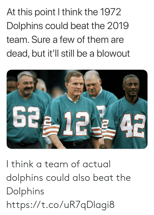 Football, Nfl, and Sports: At this point I think the 1972  Dolphins could beat the 2019  team. Sure a few of them are  dead, but it'll still be a blowout  2 12 42 I think a team of actual dolphins could also beat the Dolphins https://t.co/uR7qDlagi8