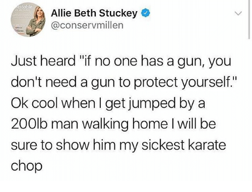 "Memes, Cool, and Home: atab  Allie Beth Stuckey  @conservmillen  Just heard ""if no one has a gun, you  don't need a gun to protect yourself.""  Ok cool when I get jumped by a  200lb man walking home I will be  sure to show him my sickest karate  chop"
